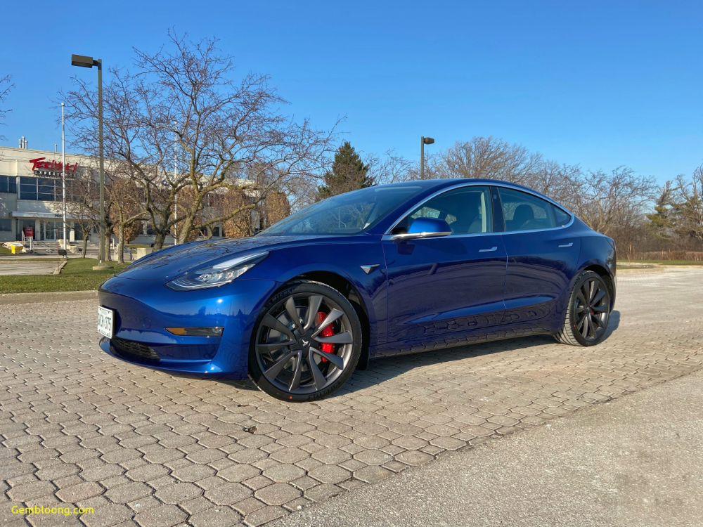 Tesla Model 2020 Elegant 2020 Tesla Model 3 Performance I Finally Bought One Tesla Model Tesla Model