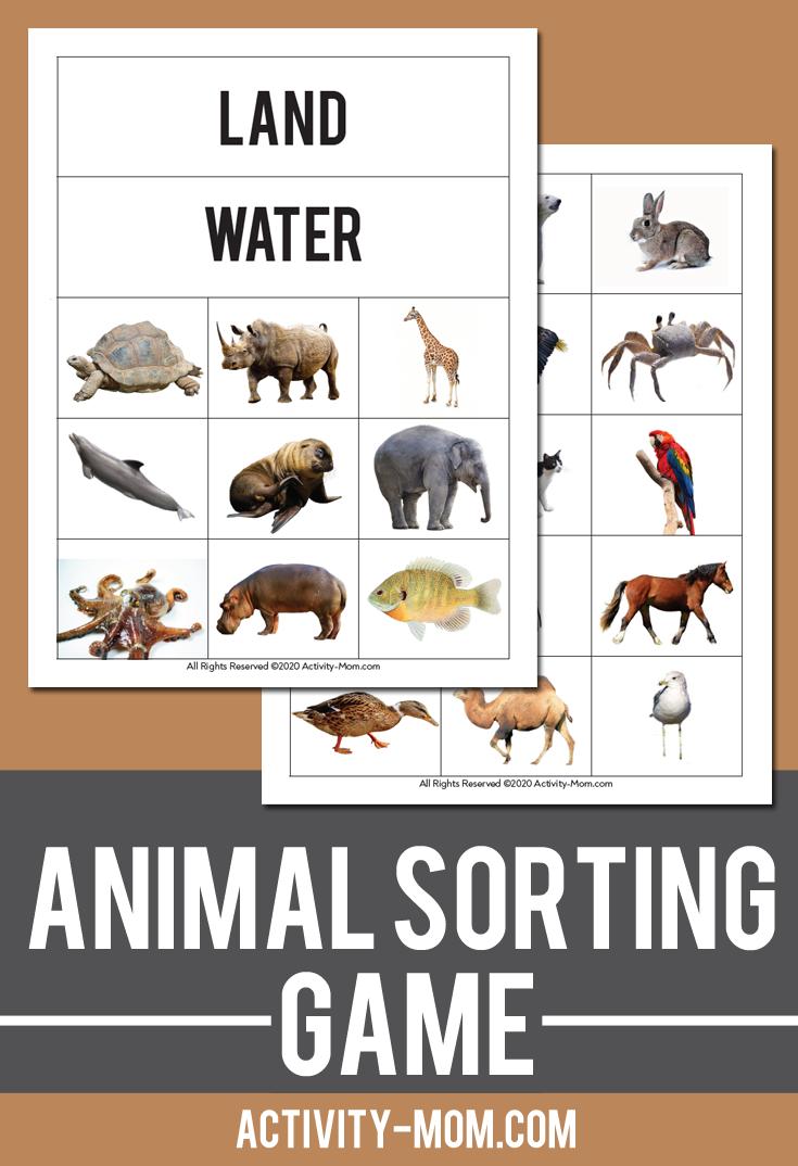 Sorting Printables The Activity Mom Animal Activities For Kids Family Activities Preschool Family Activities Kindergarten [ 1074 x 735 Pixel ]
