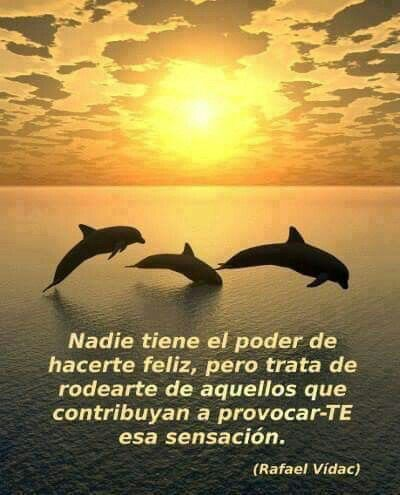 Delfines Frases Pinterest Quotes Wisdom Y Love