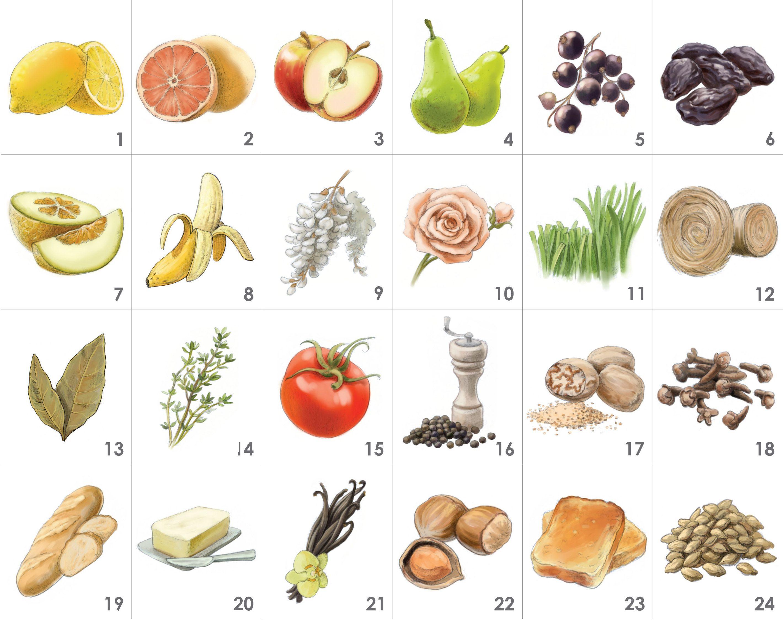 Kit Aromi della Birra - 24 Aromi: 1.limone, 2.pompelmo, 3.mela, 4.pera, 5.ribes nero, 6.prugna secca, 7.melone, 8.banana, 9.acacia, 10.rosa, 11.erba tagliata, 12.fieno, 13.foglia di alloro, 14.timo, 15.pomodoro, 16.pepe, 17.noce moscata, 18.chiodi di garofano, 19.pane, 20.burro, 21.vaniglia, 22.nocciola, 23.tostato, 24.malto