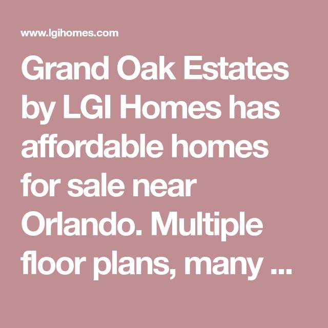 Brand New Homes for Sale in Leesburg FL Meadow Ridge