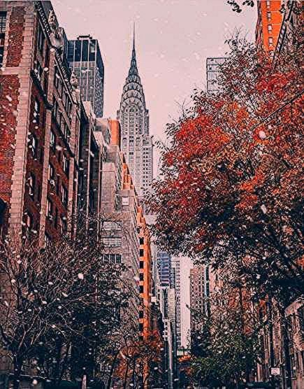Photo of Trendy Travel Photography Tumblr New York Central Park Ideas