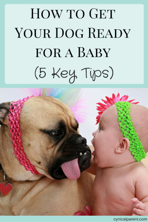 How To Get Your Dog Ready For A Baby 5 Key Tips Dogs And Kids New Baby Products