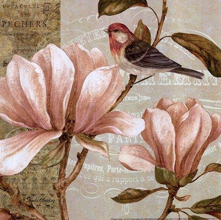 Magnolia Collage I - Mini by Pamela Gladding art print