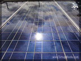 Caribbean sun reflected in solar panels (Turtuga Blanku music is recorded using only solar power: www.TurtugaBlanku.com).