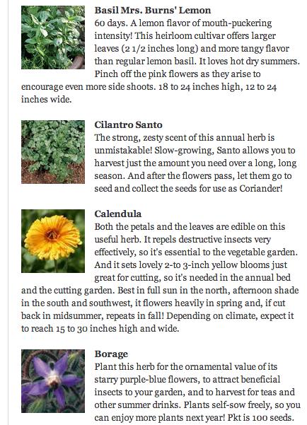 Top 10 Herbs list | Herbalism | Herbs list, Herbalism, Herbs