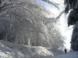 En hiver, le site de Picotalen pour des randonnées nordiques