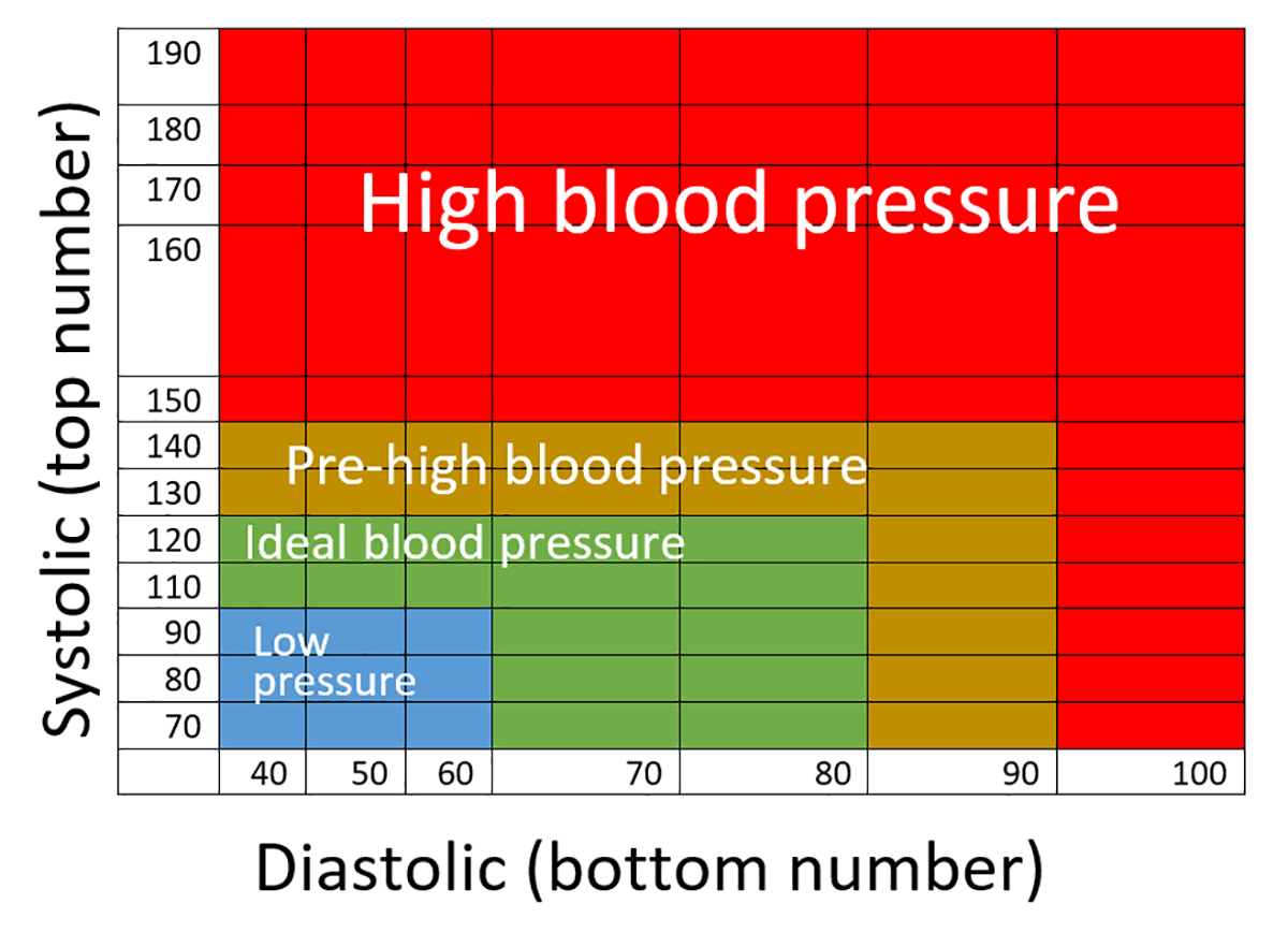 Simple blood pressure chart1200869 simple blood pressure simple blood pressure chart1200869 simple blood pressure geenschuldenfo Choice Image