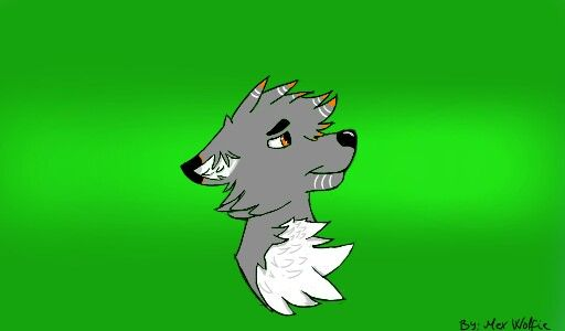A random wolf art (finished) by: Mex Wolfie