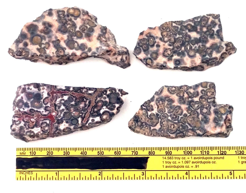 30 x 40 Cab. 30mm x 40mm Leopard Skin Jasper Cabochon