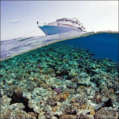 Santa Claus Travel Egypt  An amazing View from Hurghada, Egypt  Contact us: reservation@santaclaustravel.com
