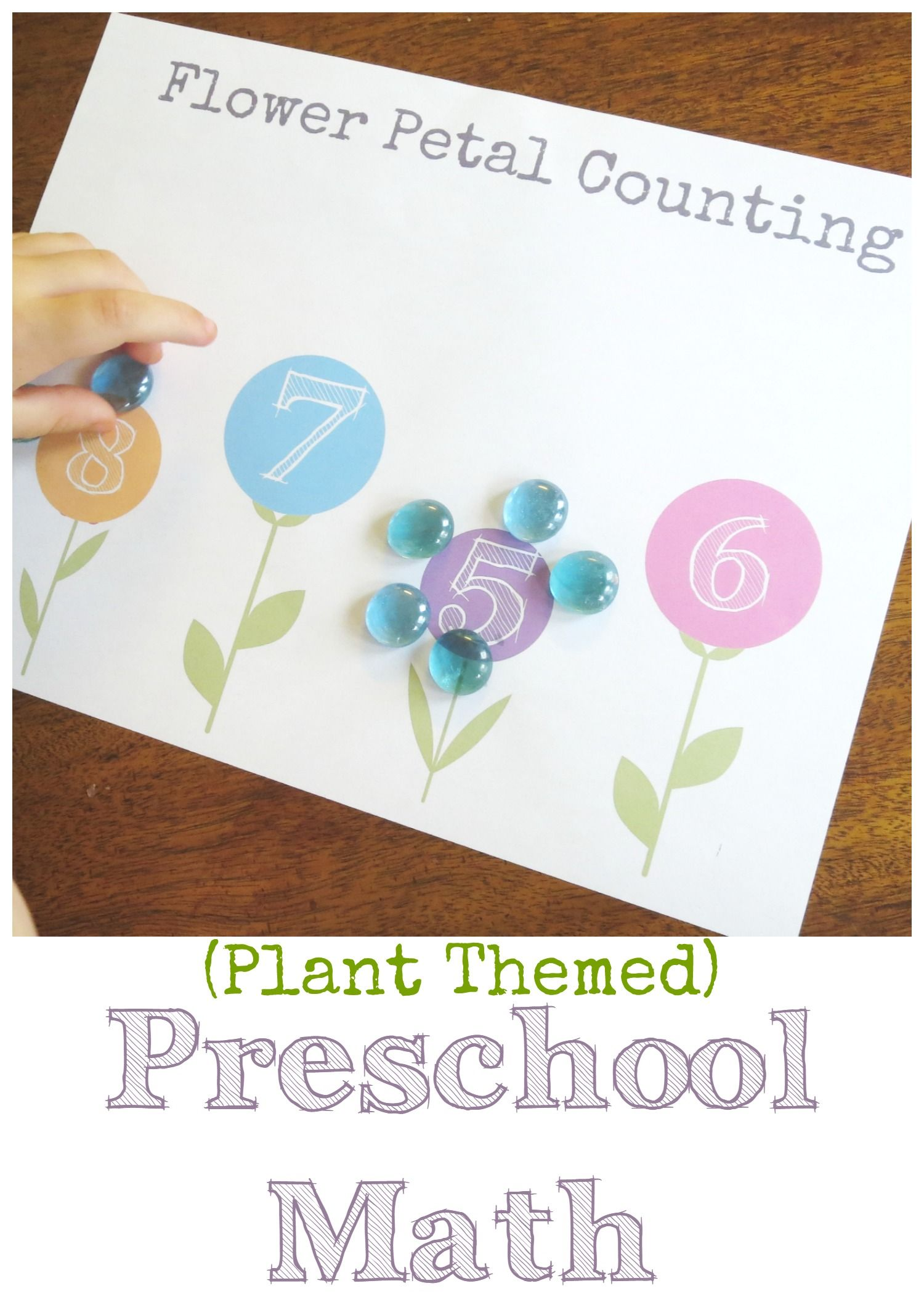 Plant Theme Preschool Math Flower Petal Counting Free Printable Stem For Kids