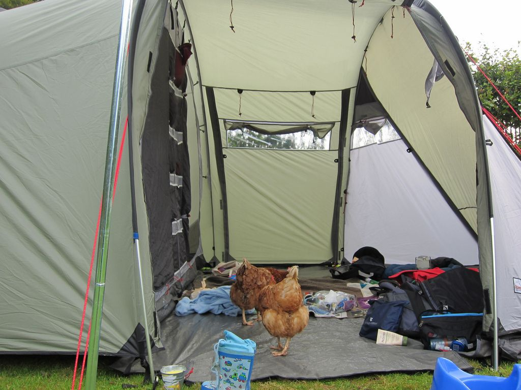 Cool New Camping Supplies In The End This Is What We Got Down To Its Not An Exhaustive List