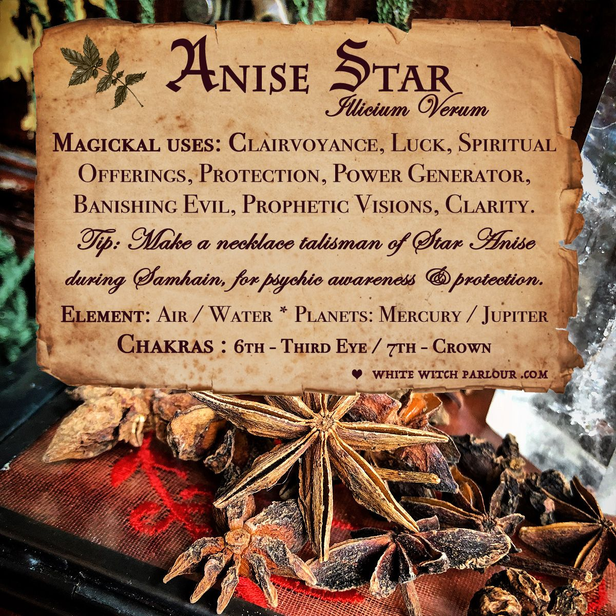 ANISE STAR APOTHECARY  Dried Herbs  For Clarity, Awakening