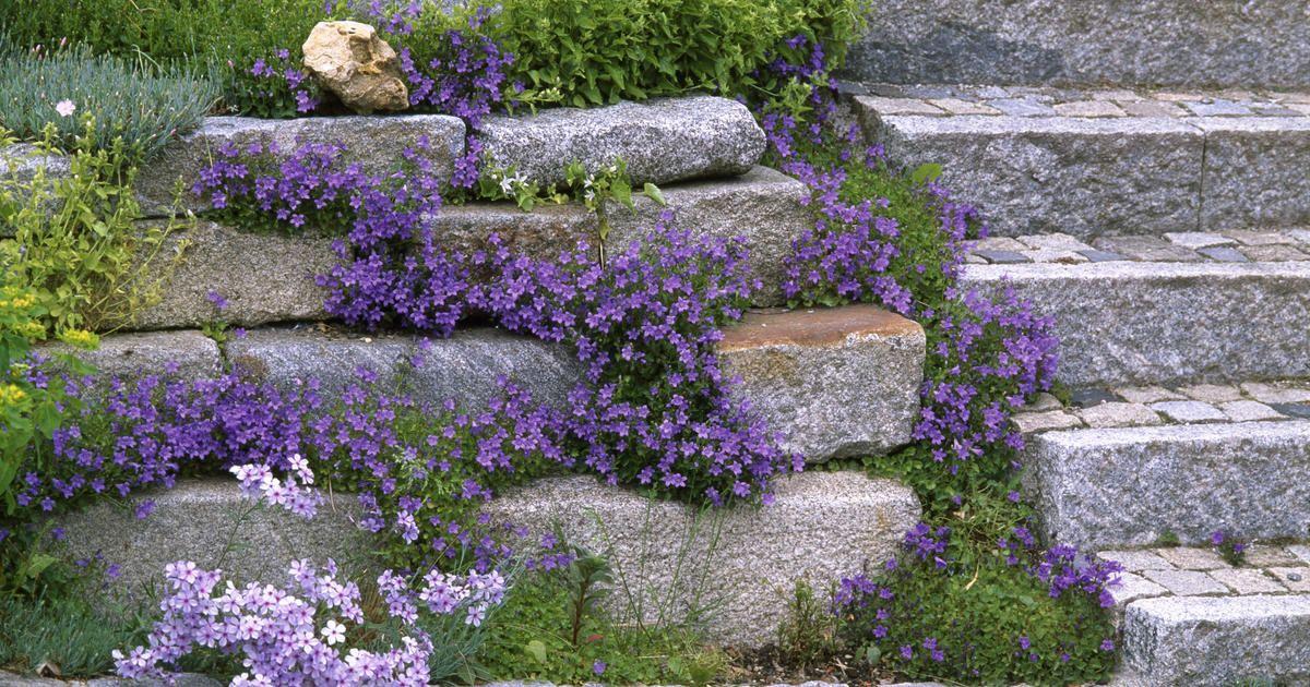 Granit Steingarten Mauern Landschaftsbau Mit Steinen