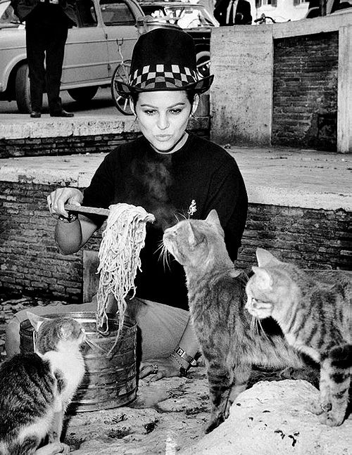 Claudia Cardinale feeding spaghetti to feral cats in Rome, 1962.