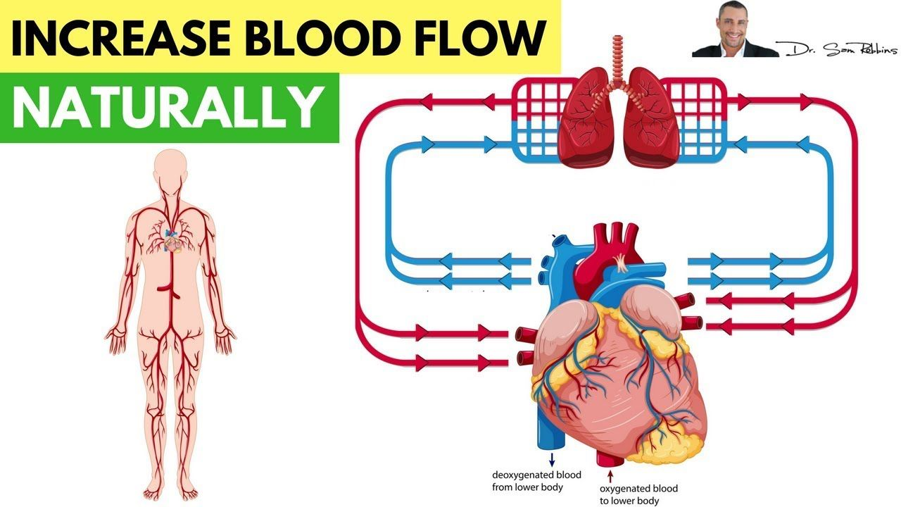 ️ How To Increase Blood Flow & Circulation Naturally