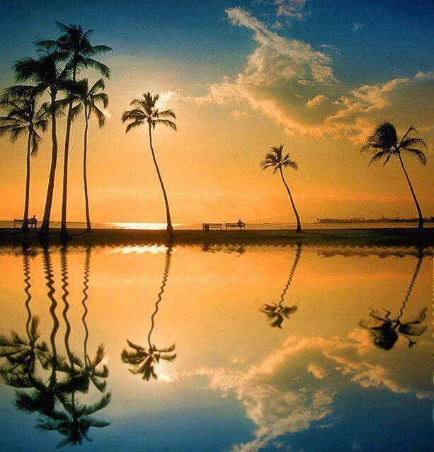 Lagoon - Honolulu,  Hawaii