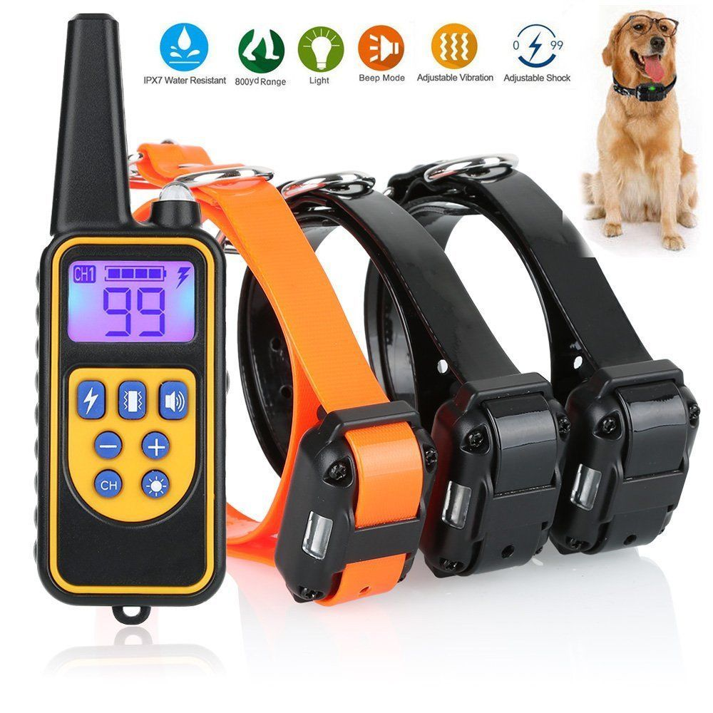 Features Ip6 Depth Waterproof Remote Control Dog Training Collar