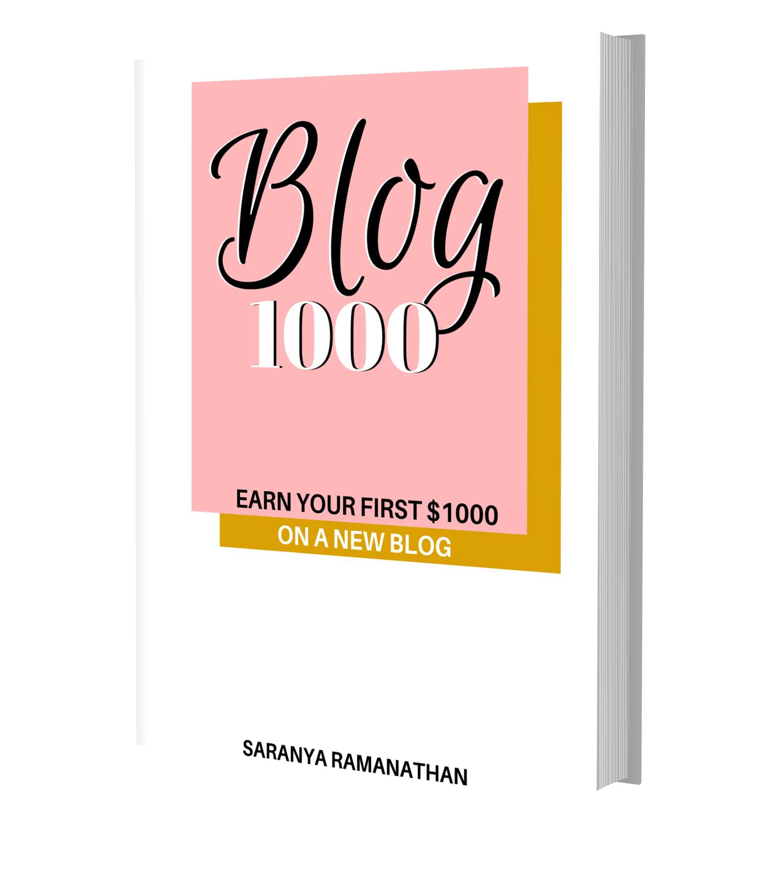 How to Make Money with a Blog for Beginners over 1,000