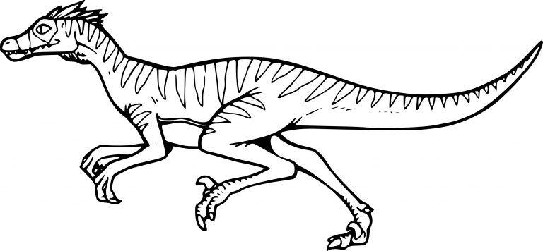 Coloriage Dinosaure Velociraptor à Imprimer Pour Dessin