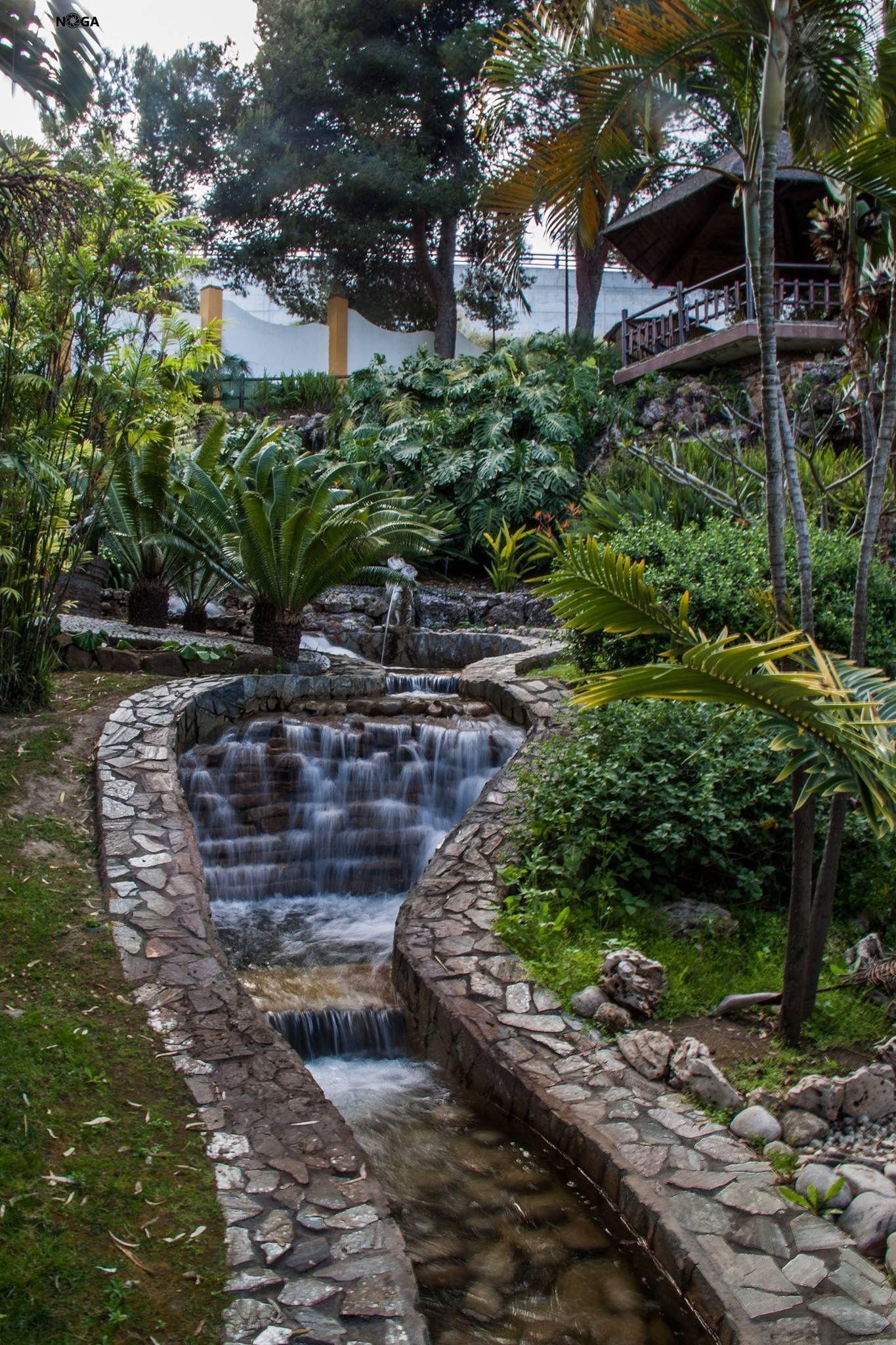 Jard n bot nico molino del inca torremolinos m laga for Jardin botanico torremolinos