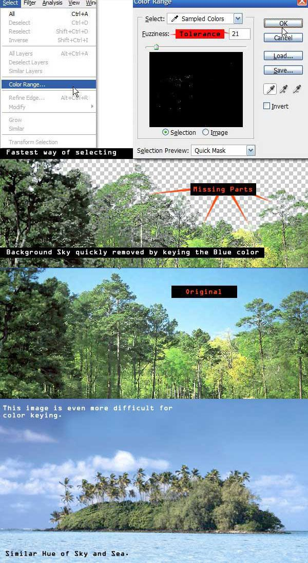 A Comprehensive Introduction to Photoshop Selection Techniques - Tuts+ Design & Illustration Tutorial