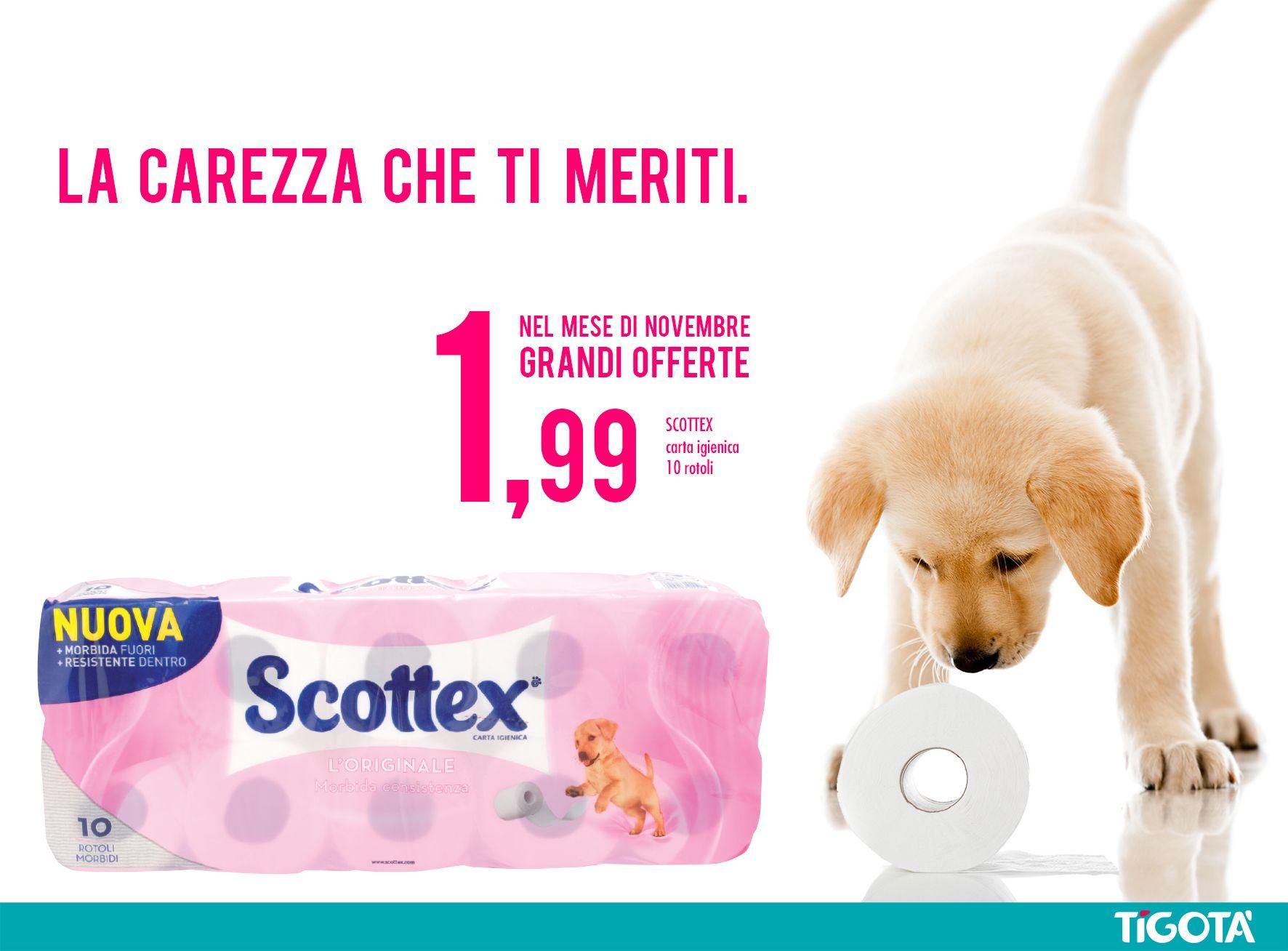 SCOTTEX CARTA IGIENICA LORIGINALE 10 ROTOLI