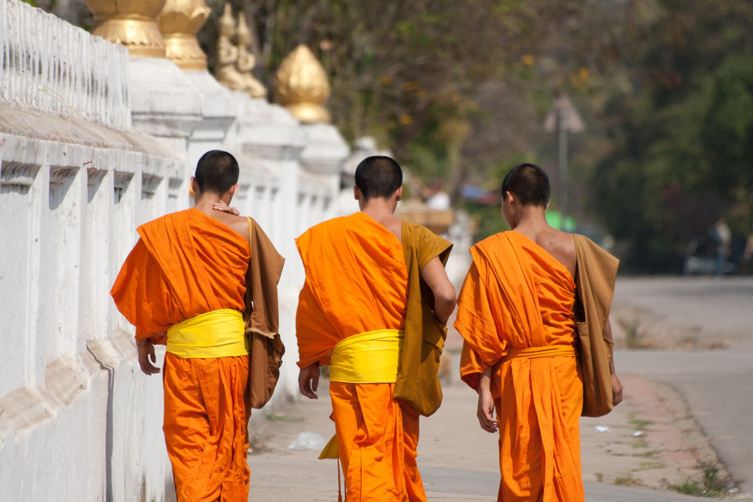 All Lao boys are expected to become novice monks for at ...