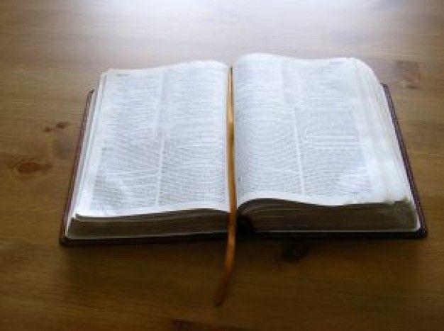 Dibujos De Biblias Abiertas Imagui Biblias Biblia Imagen