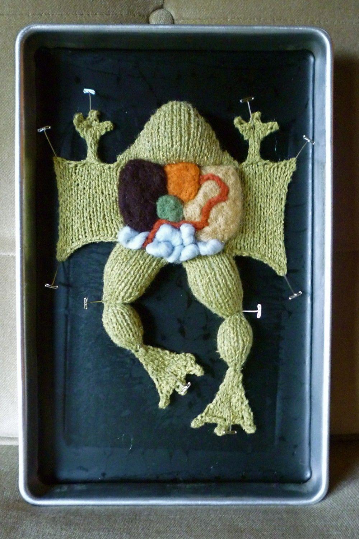 Knitting in Biology 101 DIY Kit.  via Etsy.