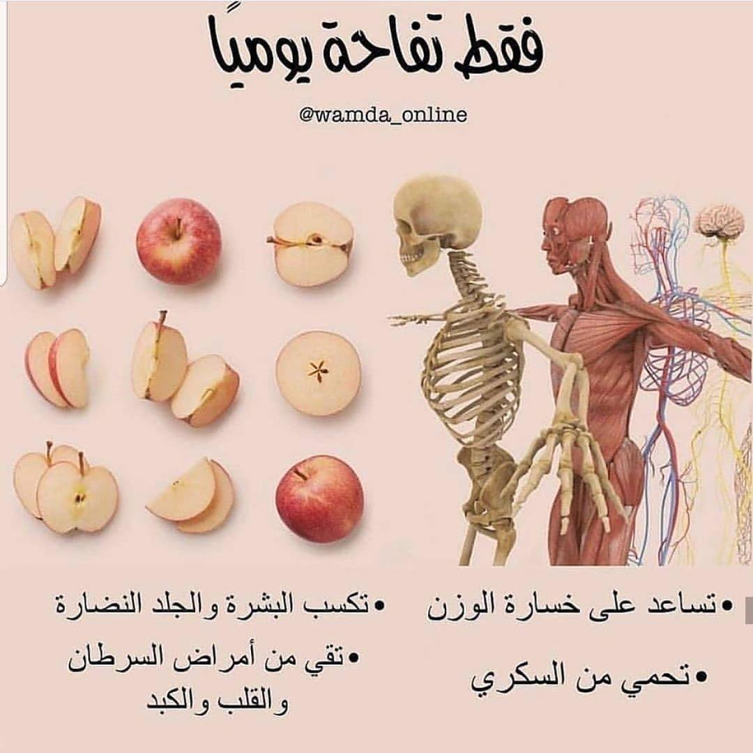 مساء الخير عرب فوتو السعوديه غرد بصوره انستقرام صور صورة تصميم تصوير كميرا فوتو لايك مضحك من تصميمي Health Fitness Food Healthy Nutrition Diet Health Diet