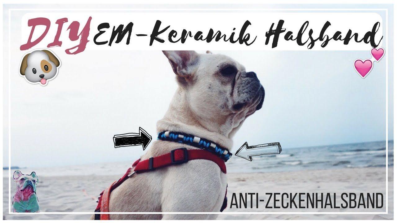 Diy Paracord Em Keramik Halsband Anti Zecken Em Keramik Halsband Paracord Halsband