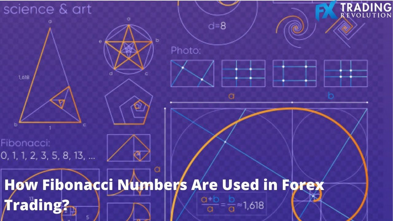 How Fibonacci Numbers Are Used In Forex Science Art Being Used