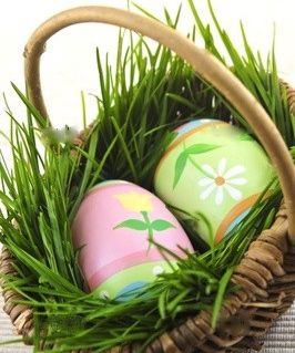 Grow your own easter basket grass easter pinterest easter grow your own easter basket grass negle Image collections