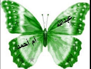 توزيعات العيد فراشات اسم الموزعة ف الاسفل و اسم الطفل ف الاعلى Bướm