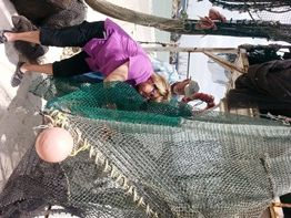 Texas Sea Grant Project Helps Shrimp Fishery Save Sea Turtles