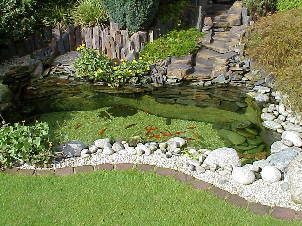 Entzuckend Gartenteich | Teichfolien 24.de U0027s Blog   Garten, Teich, Bachlauf