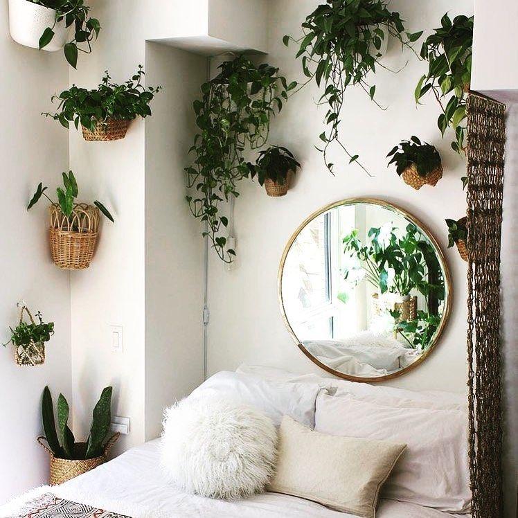 Trailing Plants Hanging Plants Bedroom Decor Bedroom Plants Jungalow Vining Plants Cute Pots For Plants Plants At Bedroom Design Bedroom Interior Living Decor