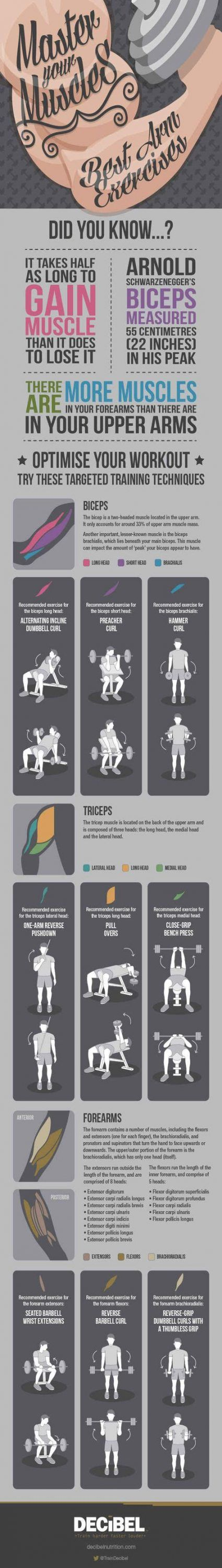 Super fitness workouts arms muscle Ideas #fitness