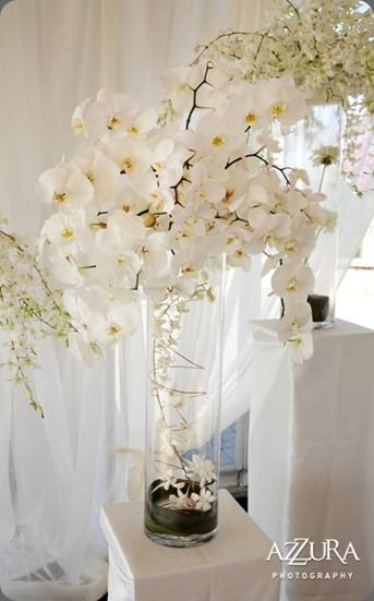 Orchid Centerpiece Totally Doing This Because Orchids Are My