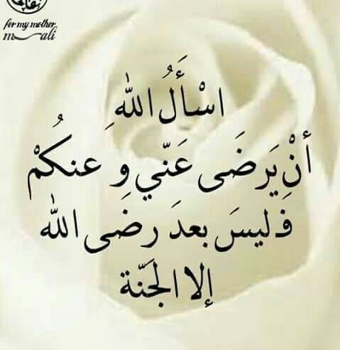 رضاك والجنه يارب Nour