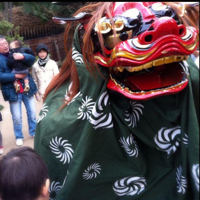 """Shishimai"", traditional japanese new year event."