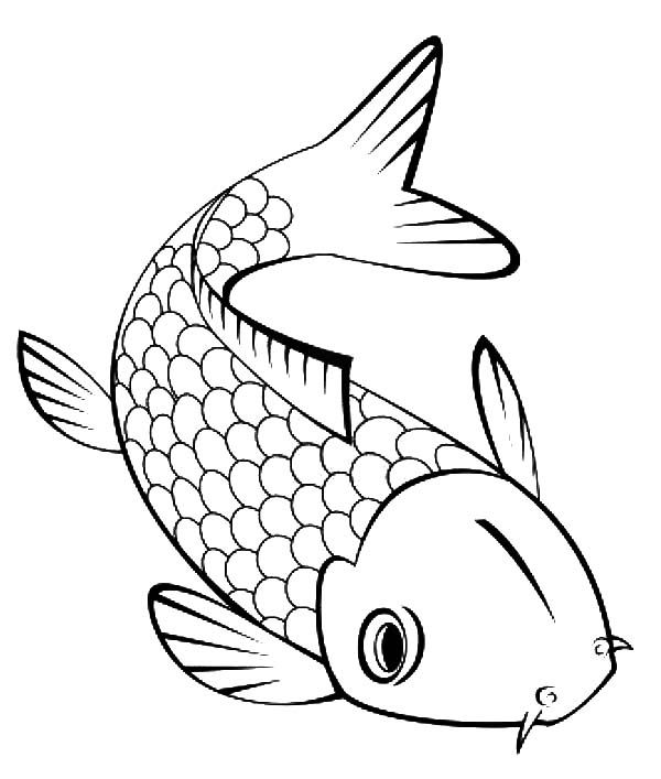 Cute Little Koi Fish Coloring Pages Fish outline, Koi