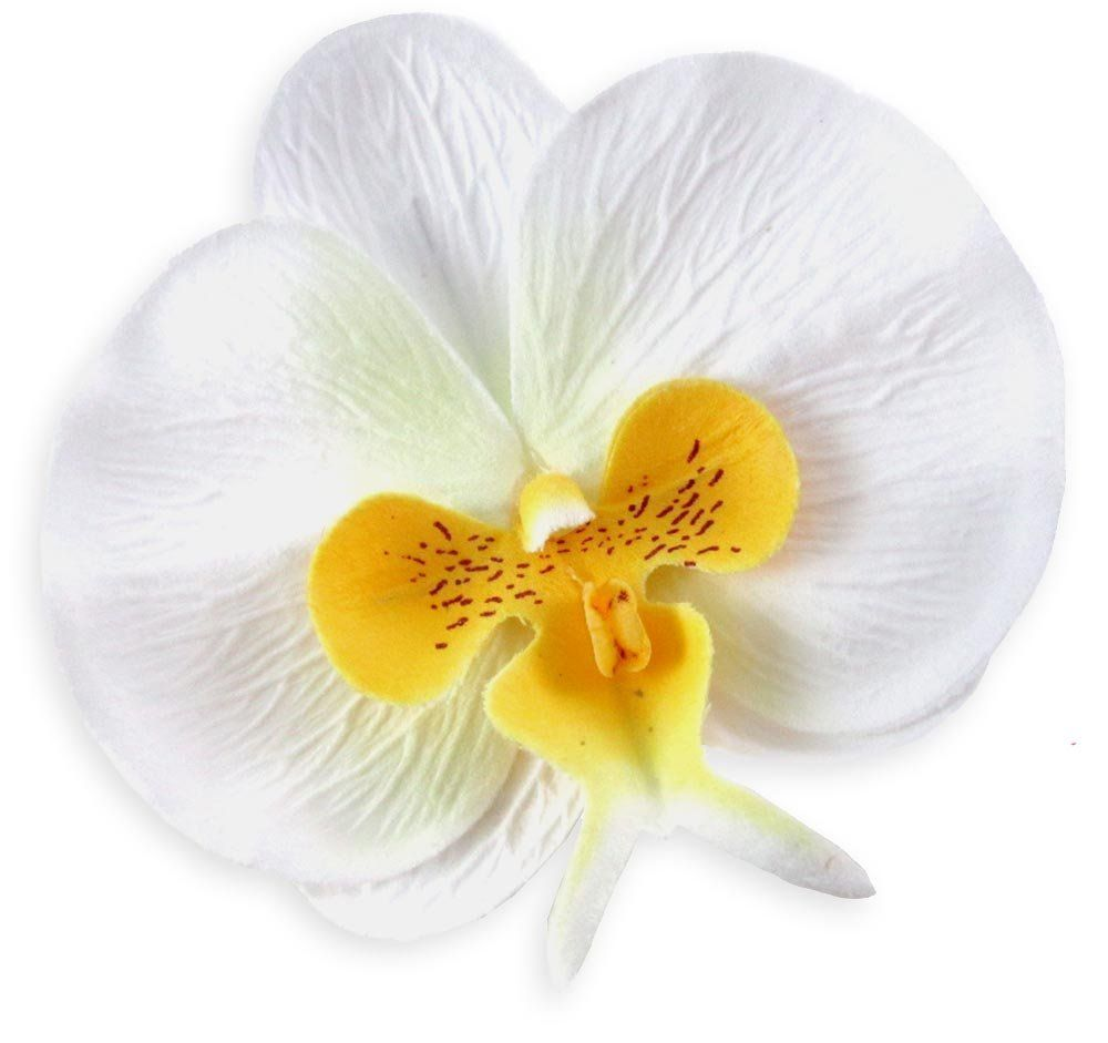 10 White Yellow Phalaenopsis Orchid Silk Flower Heads 375