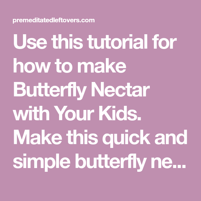 Use This Tutorial For How To Make Erfly Nectar With Your Kids Quick And Simple Recipe Draw Erflies Into Yard