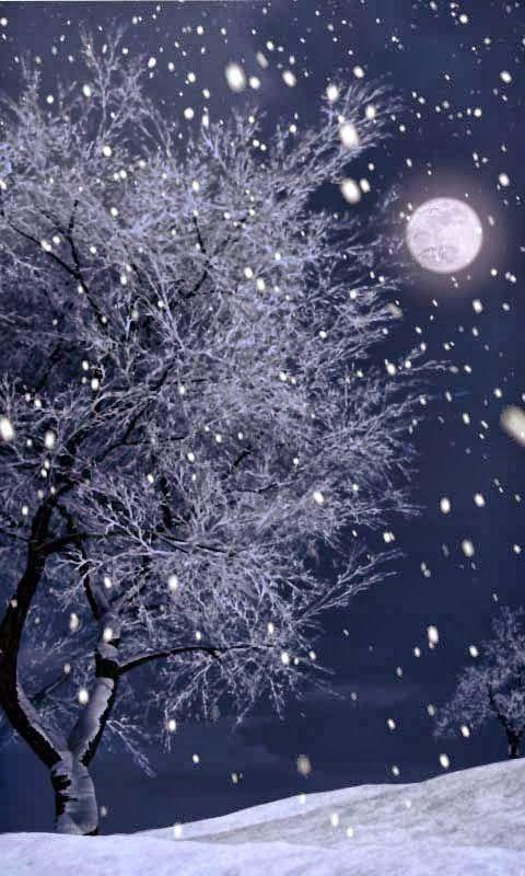 New Wonderful Photos: Snowy Moon