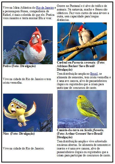 Atividades Filme Rio Com Imagens Filme Rio Personagens Do