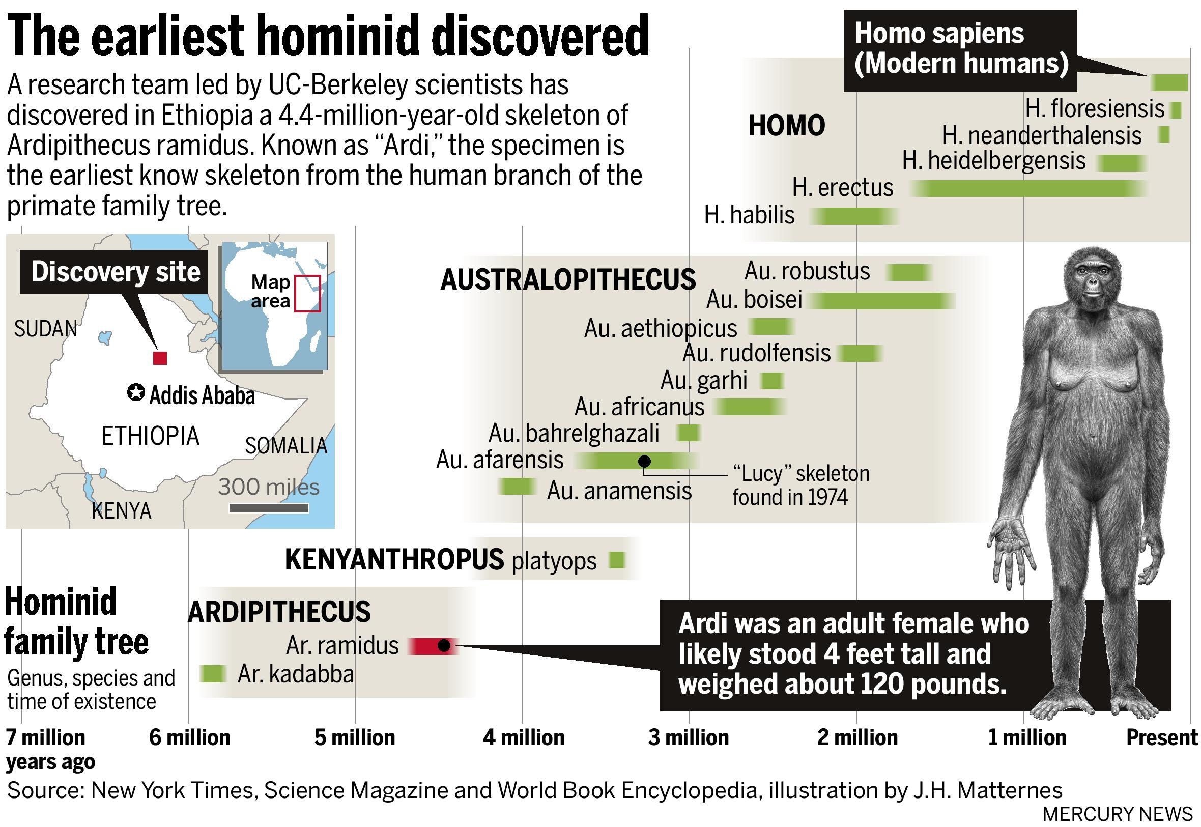 Timeline Of Scientific Discoveries