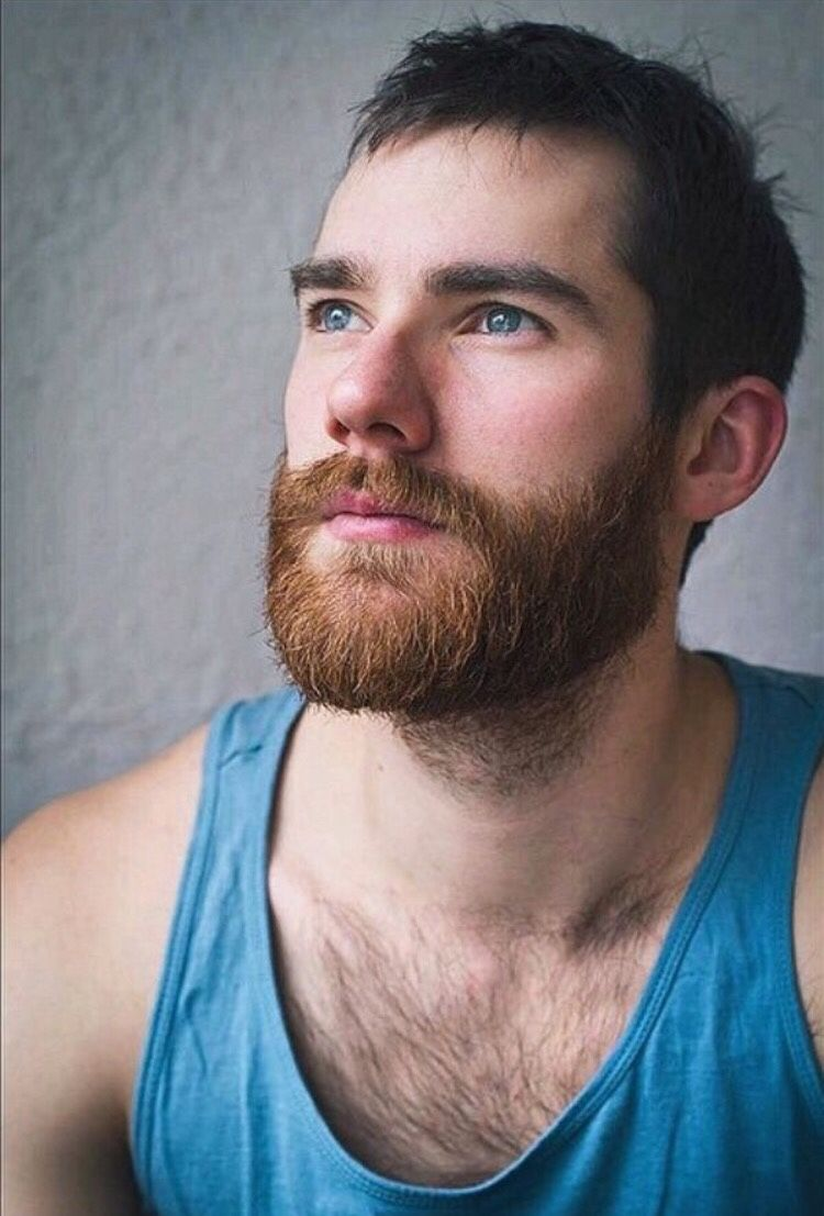Masculinecopenhagentumblrcom Post 158512802925  Beards